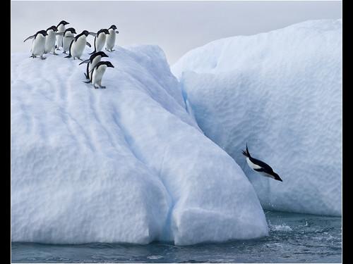 antarctica glacier ce landscapei southampton12accepted
