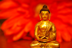 temple, yellow, red, gautama buddha, statue,