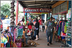 Nimbin NSW Country