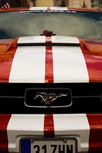 Mustang Mustangi peal