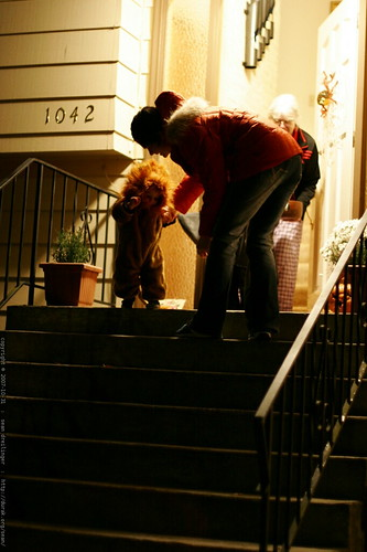 scary lion gets some help down the stairs    MG 5694