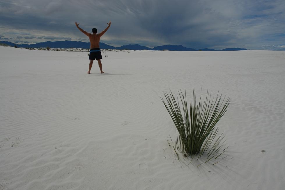 Sólo unos pocos centímetros de las dunas de yeso son de arena suelta. El agua de lluvia que cae sobre las dunas disuelve parte del yeso y cementos de los granos de arena, creando una forma cruda de yeso. Esto hace que en las dunas de arena blanca fácil sea fácil caminar. white sands, un desierto único que cambió el mundo - 2527781217 8cf84a5f6f o - White Sands, un desierto único que cambió el mundo