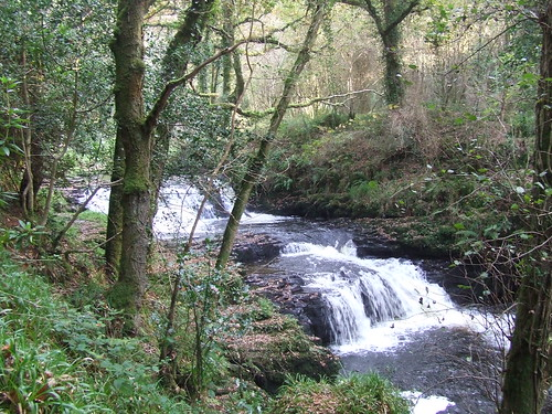 River Clare Water Cascade