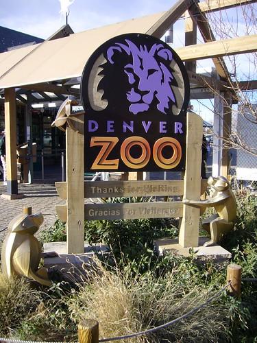 zoo magazine dating app