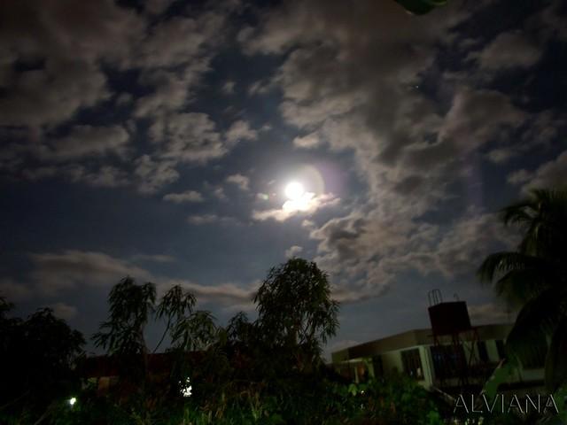 Moon from My Home Backyard