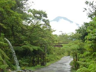 Entrada de Finca, Rio Negro, Equador