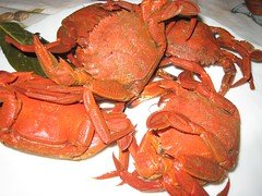 seafood boil(0.0), invertebrate(0.0), dungeness crab(0.0), king crab(0.0), homarus(0.0), american lobster(0.0), crab(1.0), animal(1.0), shellfish(1.0), crustacean(1.0), seafood(1.0), food(1.0),