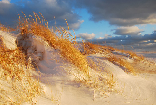 winter sunset michigan grandhaven dunegrass 18200vr abigfave nikond80 goldmedalwinner theperfectphotographer goldstaraward