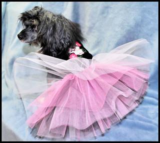 Pink & Black tutu