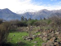 """Chile : """"Comunidad Ecologica"""" Peñalolen: el arte de habitar, el recurso de re-ciclar / Handmade houses"""