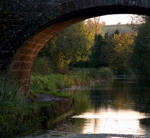 bridge autumn sunset canal halberton