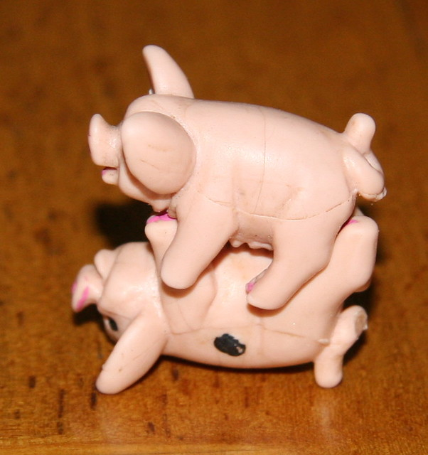 HOT PIG SEX!! (Missionary Position)