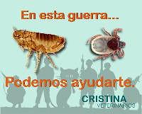 guerra pulgas-garrapatas
