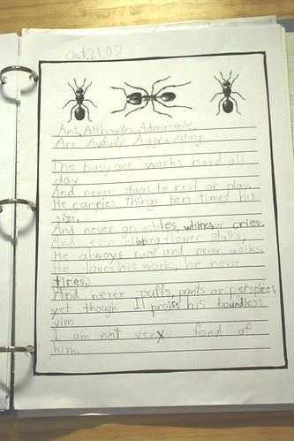 poem notebook ANTS