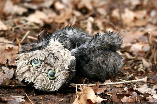 abandoned owl puppet    MG 8824