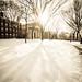 Brown University in winter