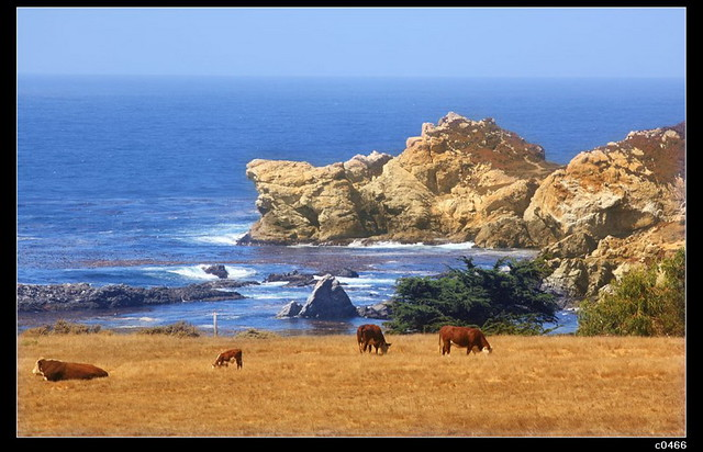 The california coast scenery flickr photo sharing - Beautiful panoramic view house to take full advantage of the scenery ...