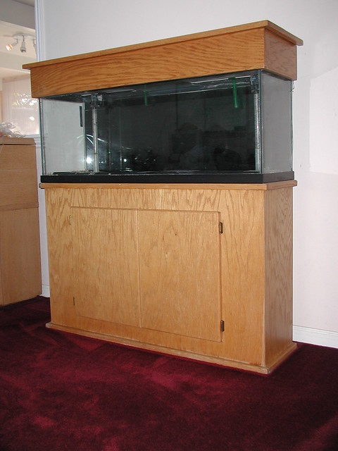 55 gal fish tank stand flickr photo sharing for 55 gallon fish tank with stand