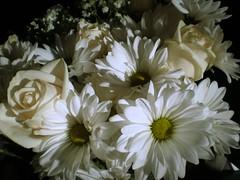 Bridal Bouquet (3)