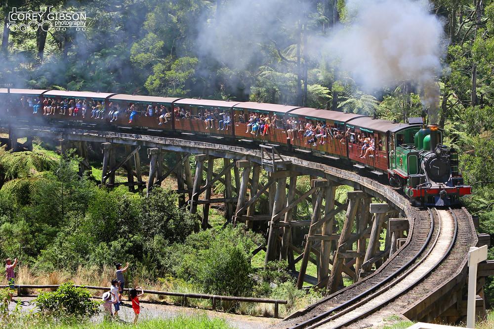 Puffing Billy Railway - 6A crossing Monbulk Trestle Bridge by Corey Gibson