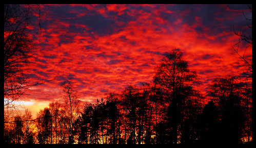 november autumn sunset red sky sun rot fall nature set clouds landscape nikon scenery europa europe flickr sweden schweden herbst north norden skandinavien swedish explore 100views 200views sverige 500views d200 landschaft höst 1000views solnedgång landskap redsunset röd naturesfinest sobeautiful 333views redclouds 2000views flickrexplore borås nikond200 2500views supershot 1300views 1800views 1500views swedennature 1400views 1600views 1700views 35faves 100comments 1900views golddragon mywinners bygd redheaven platinumphoto 2100views superbmasterpiece sandared diamondclassphotographer flickrdiamond 50comments theunforgettablepictures sjuhärad goldstaraward flickrexcellentphotos scenicsnotjustlandscapes exquisiteimage swedensky