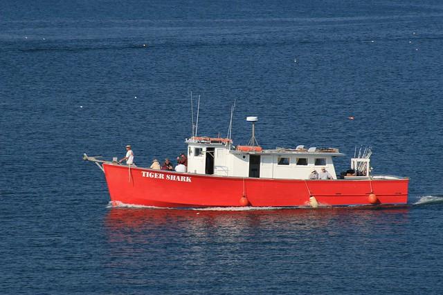 Boat in Bar Harbor