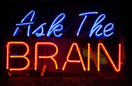 Ask the Brain
