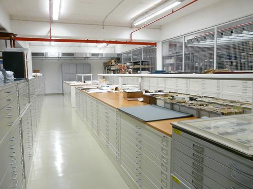 ICOM-Tag im Museumsdepot
