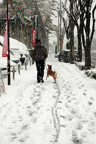 Walk in the snow♫〜♫