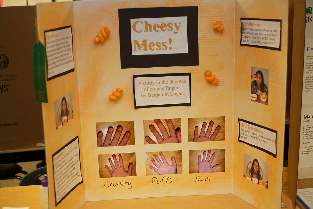 best science fair projects ever Check out these fun 8th grade science fair projects and experiments we have a wide variety of science fair ideas for any interest.