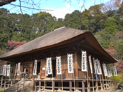 outdoor structure(0.0), temple(0.0), shinto shrine(0.0), estate(0.0), shrine(0.0), chapel(0.0), thatching(1.0), building(1.0), hut(1.0), cottage(1.0), house(1.0), log cabin(1.0), home(1.0),