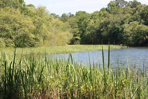 park lake state tyler
