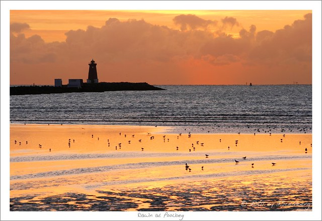 Dawn at Poolbeg