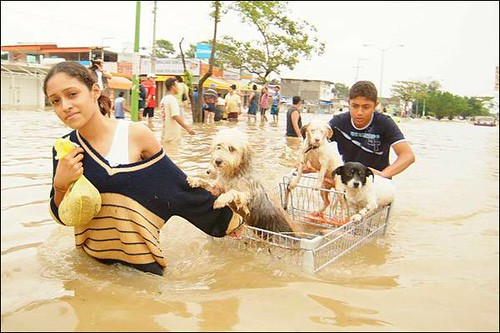 La UAEM crea una metodología para valorar daños por inundaciones