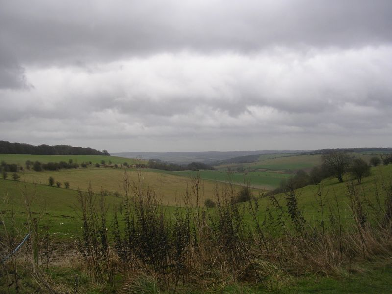Streatley Warren From the top. Goring Circular
