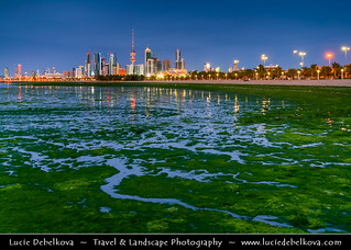 Kuwait - Kuwait City - Skyline from Al-Shuwaik during low tide with green sea-weed