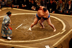 wrestler(0.0), sumo(1.0), individual sports(1.0), contact sport(1.0), sports(1.0), combat sport(1.0), grappling(1.0), wrestling(1.0),