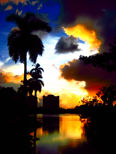 sunset universityofmiami