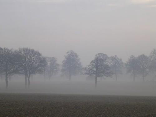 Ballerinas in the mist