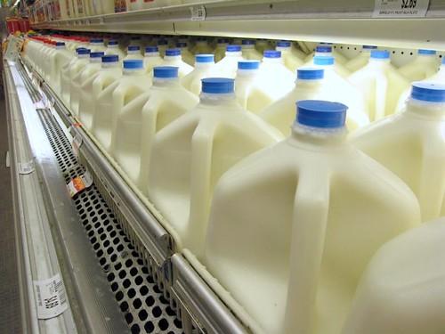 leite brasil x eua