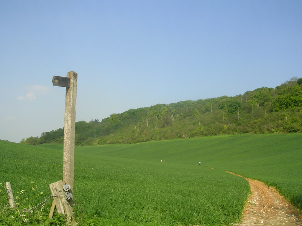 Curved valley Extra walk: Cholsey to Goring