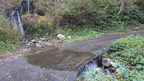 洗い越しを受け入れた舗装路