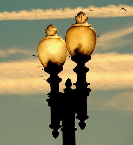 Washington city light(s)