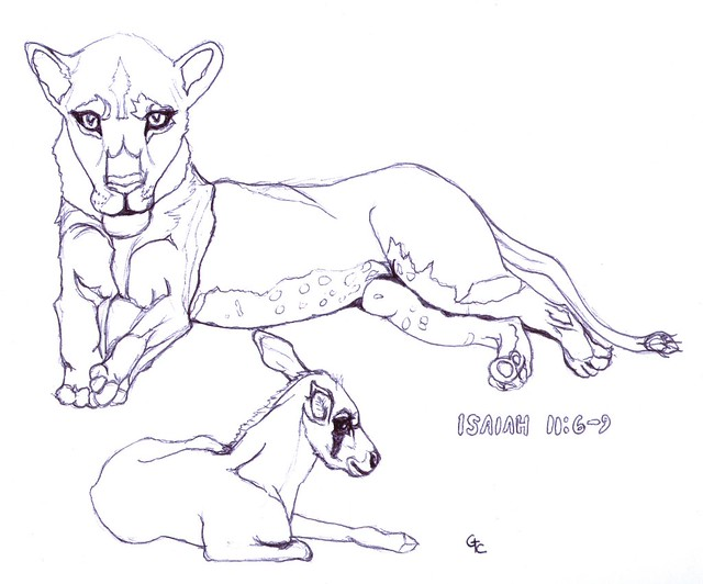 Coloring book page lioness and calf isaiah 11 6 9 flickr for Isaiah 9 6 coloring page