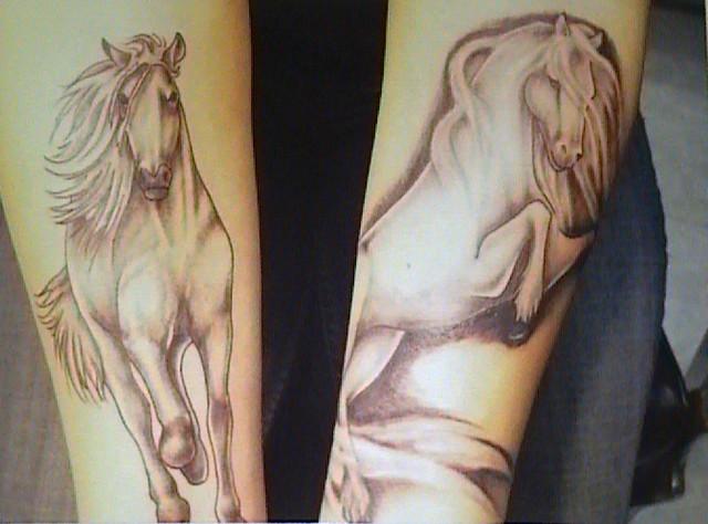 A girls Horses