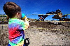 sequoia watching the diggers    MG 3781