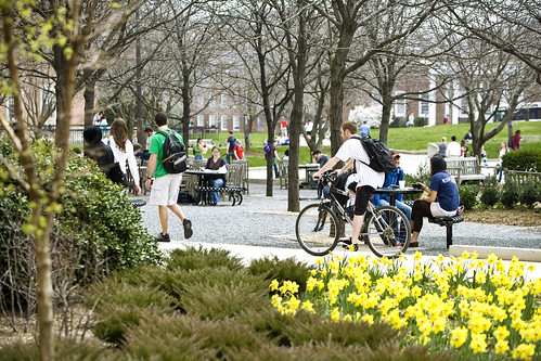 Students on campus mall.