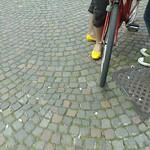 giallo scarpetta