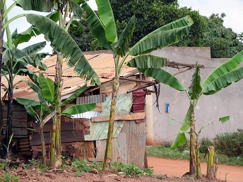 Uganda Shack
