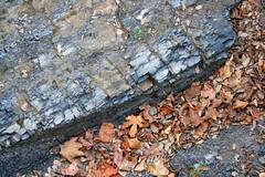 2b. Vertical rock strata close up